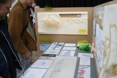 STUDIOLI exhibition, Vienna, Austria, 13.5 – 20.5.2013